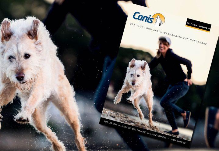 Hundtidningen Canis