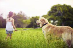 10 goda råd om vardagslydnad